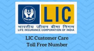 LIC Toll Free Number | LIC Helpline Number & Customer Support Email