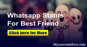 Whatsapp Status for Friends | Best Friendship Status Quotes