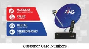 Zing Digital TV Customer Care Numbers | SMS Assistance For Recharge Queries