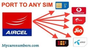 How to Port Sim Card to Other Network – Detailed Step by Step Process