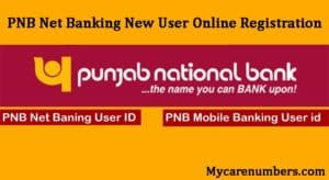PNB Net Banking New User Online Registration & Activation